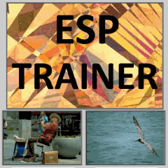 Free Online ESP Test and Trainer (telepathy and clairvoyance)